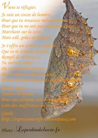 chrysalide poeme